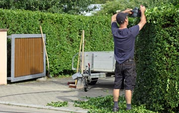 professional Perth And Kinross hedge cutting services