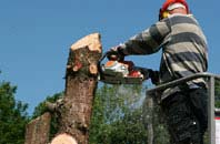 Perth And Kinross felling services