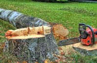 free Perth And Kinross tree felling quotes