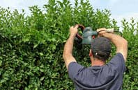 free Perth And Kinross hedge trimming quotes