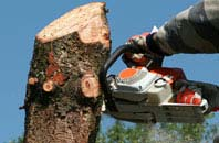 free Perth And Kinross tree removal quotes